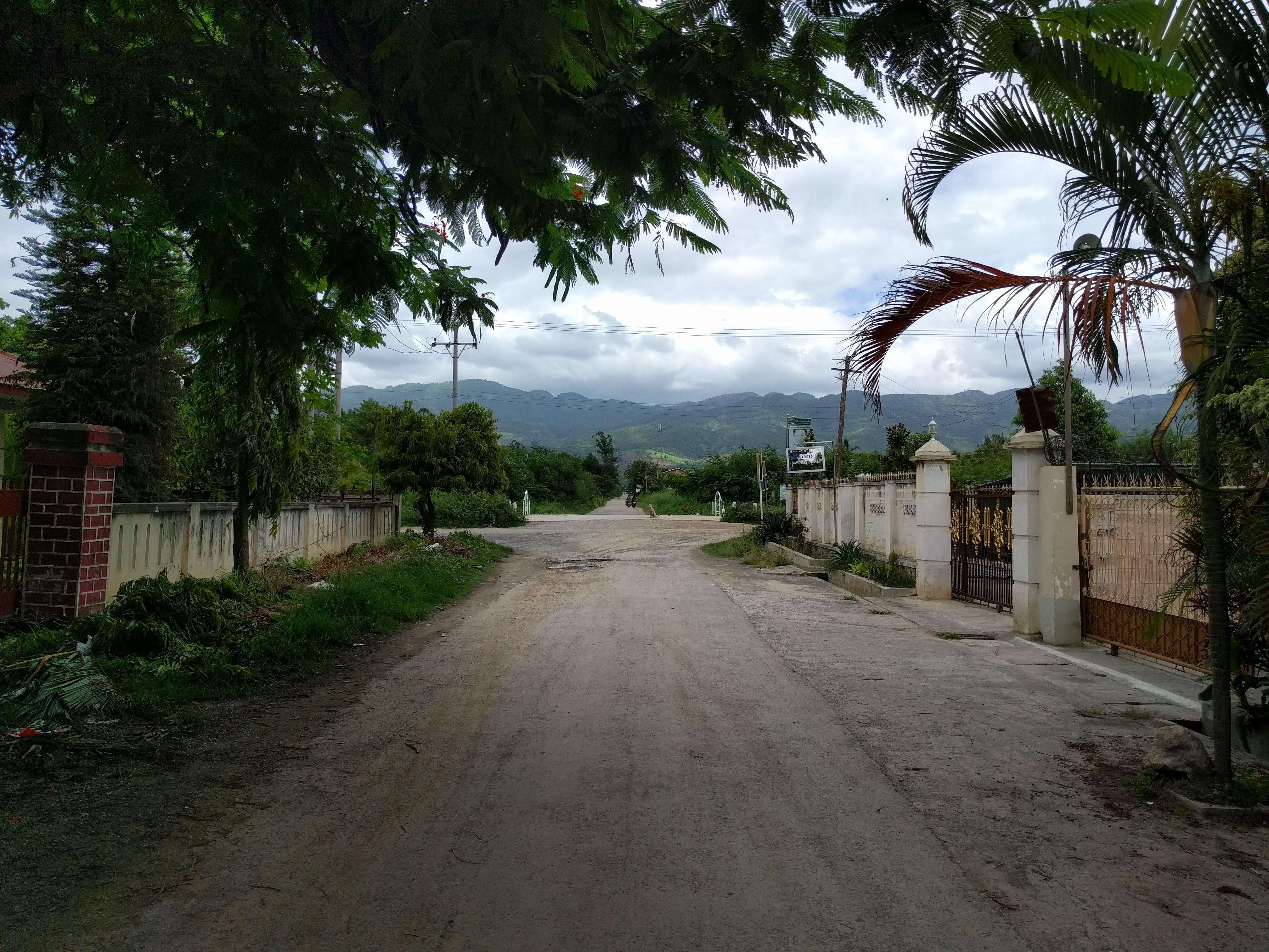Nyaung shwe rue